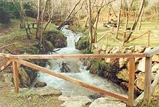 Puente en el parque de laViesca